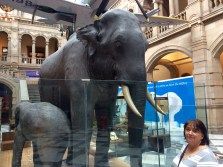 The Elephant is known as Sir Roger and the little on is Kelvin