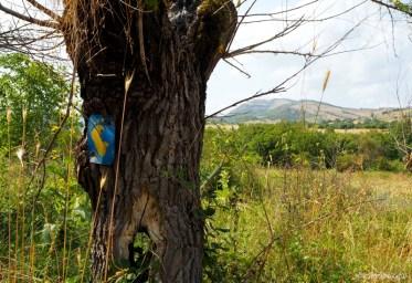 Janapar Trail - szlak przez Arcach i Armenię - Piąty Kierunek32