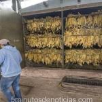 Salta: el Sindicato del Ingenio Tabacal anunció paro de brazos caídos