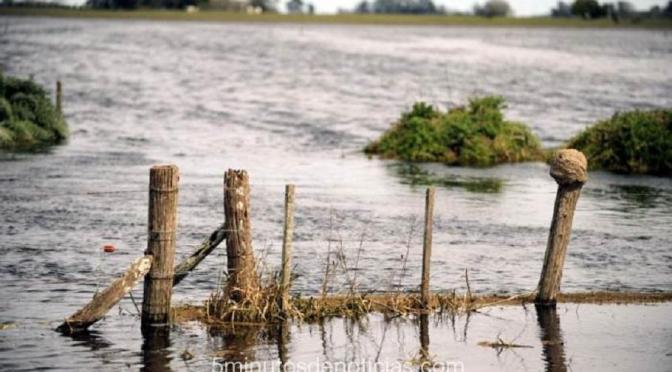 Río Negro: declaran la emergencia agropecuaria