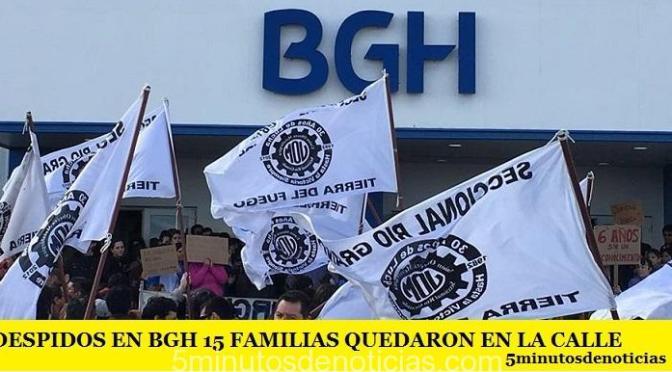 DESPIDOS EN BGH 15 FAMILIAS QUEDARON EN LA CALLE
