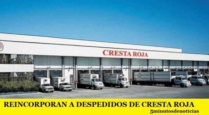 REINCORPORAN A DESPEDIDOS DE CRESTA ROJA