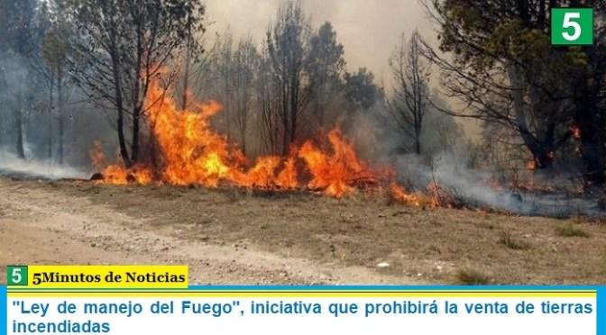 """""""Ley de manejo del Fuego"""", iniciativa que prohibirá la venta de tierras incendiadas"""