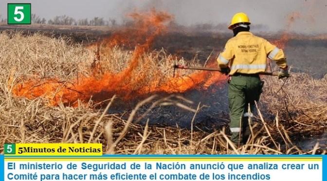 El ministerio de Seguridad de la Nación anunció que analiza crear un Comité para hacer más eficiente el combate de los incendios