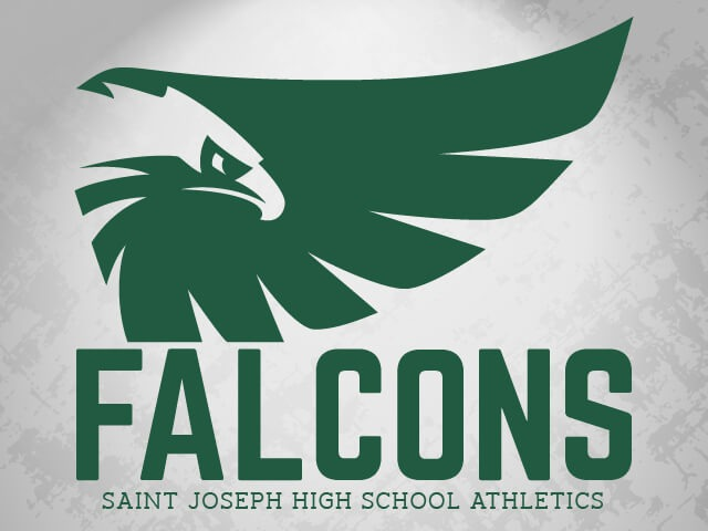 Image result for st joe's metuchen falcons