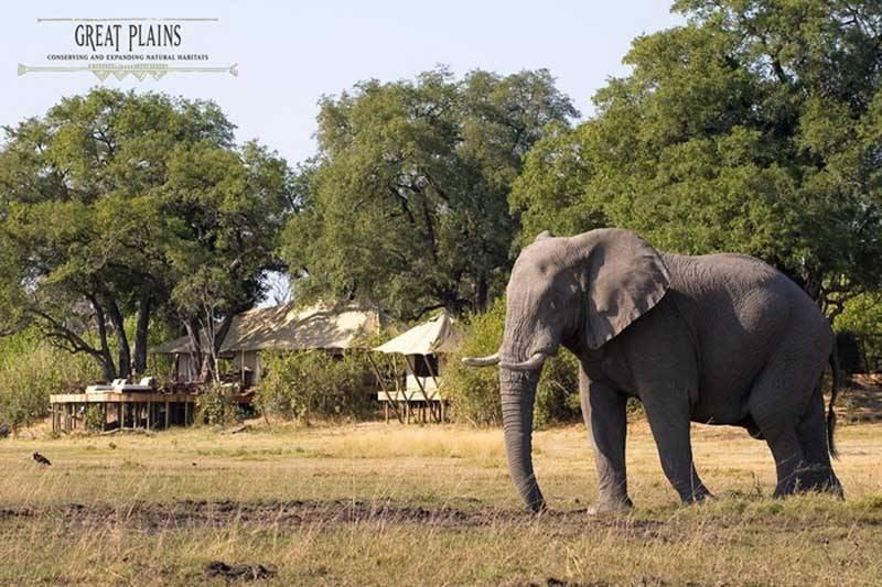 Luxury Honeymoons Africa