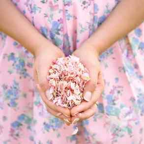 2016 Spring Confetti Colour Trends