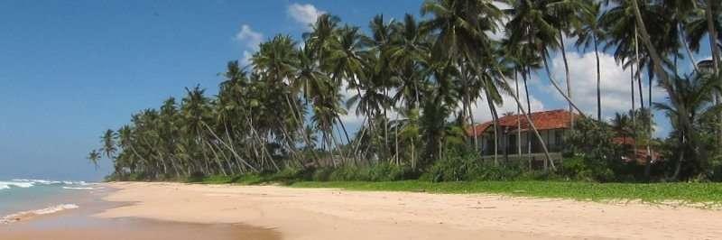 Three stunning hand picked villas for a wedding in Sri Lanka 4
