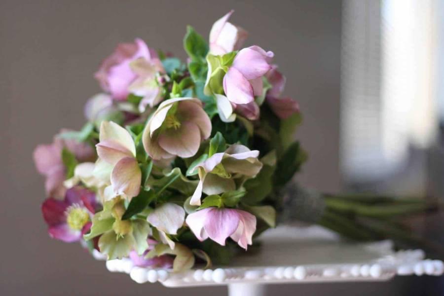 Sumptuous Spring Flowers