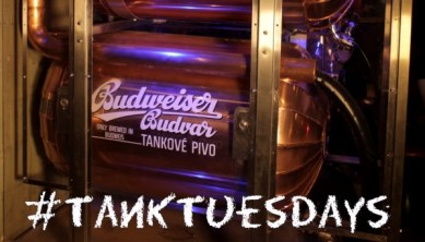 Tank-Tuesdays2-e1420622530813-598x341