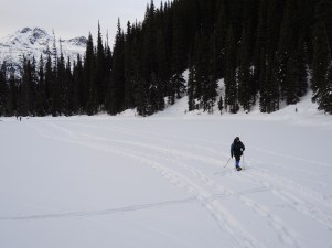 Careful crossing. One at a time. Scouter Dennis. Middle Joffre Lake.