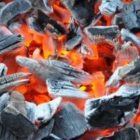 grills1 - 5VIER