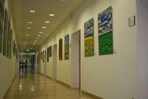 Justen Ausstellung_12