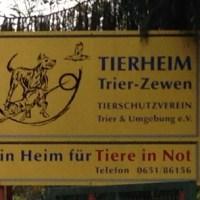 Tierheim_3 - 5VIER