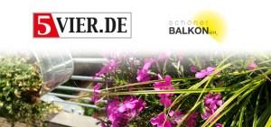 5vier.de und Schöner Balkonien suchen Triers schönsten Balkon