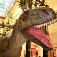 Albertosaurus,  Aufregend kaltblütig  Galerie Trier, Foto: 5vier.de - 5VIER