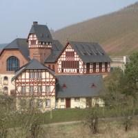 Weinbaudomäne, Foto: Trier Tourismus und Marketing GmbH - 5VIER