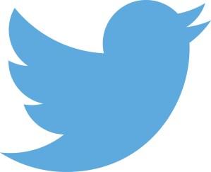 Twitter_logo_blue Kopie - 5VIER