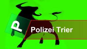 Polizei Bulle Titelbild - 5VIER