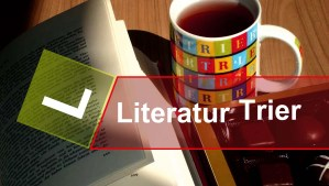 Literatur Kristina Schulz Titel - 5VIER