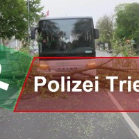 Baum_Polizei - 5VIER