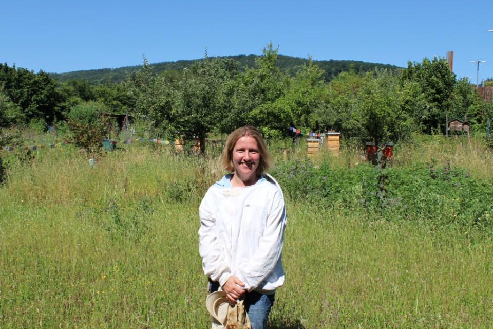Wespen Bienen Hornissen Nicole Hennecke