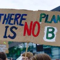 Plakat bei einem Klimastreik Foto: Pixabay