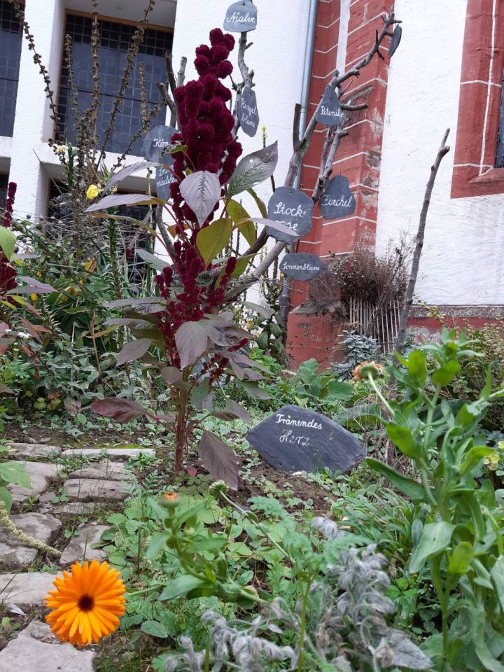 StadtGrün prämiert die schönsten Gärten Triers