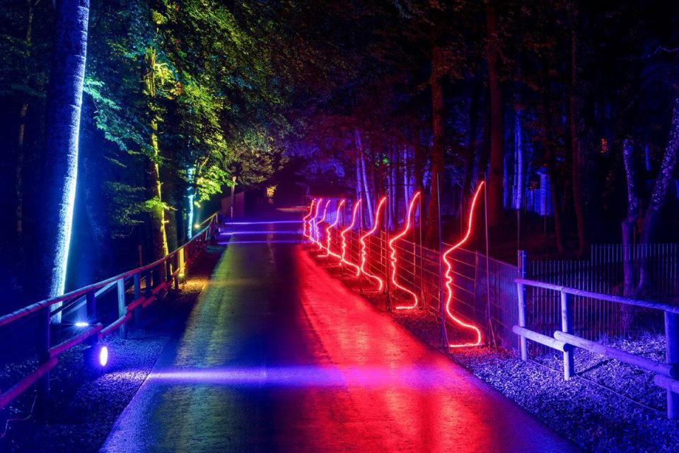 Eifelpark Leuchten vom 10. September bis 3. Oktober 2021