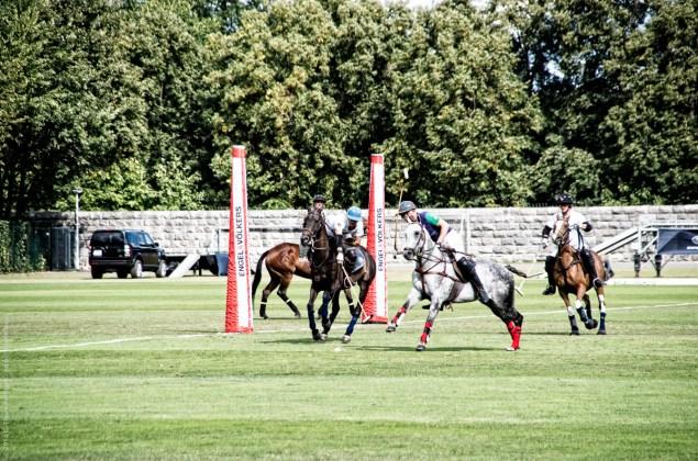 Polo auf dem Maifeld