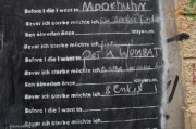 """Before I die, I want to...""""find a home"""", """"pet a wombat"""", """"ride a limo"""", """"8 grandkids"""""""