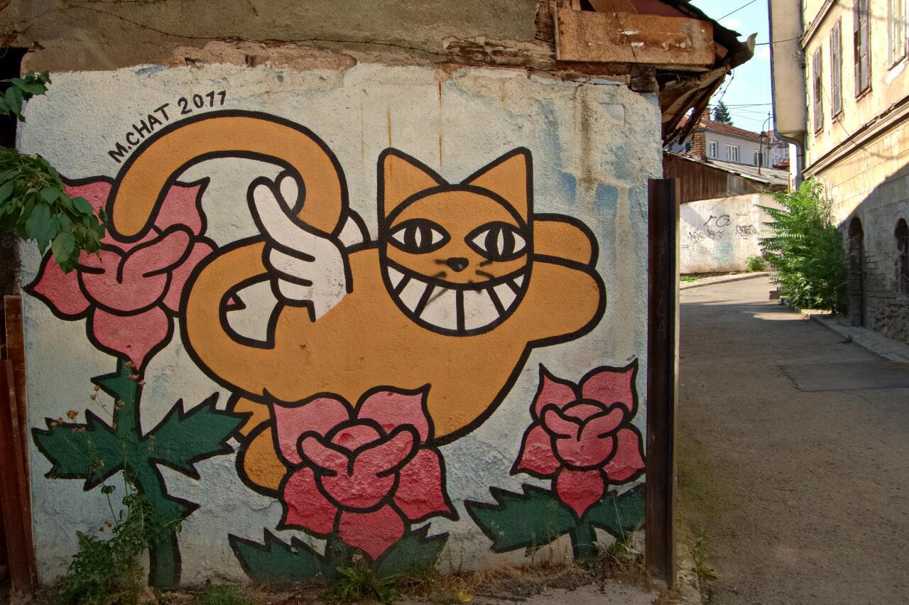 Streetart in Sarajevo: M Chat with the roses of Sarajevo