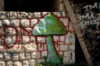 Streetart in Sarajevo: mushroom grafitti in an abandoned fort on a hill outside the town
