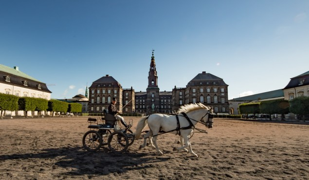 The royal horses being trained in the back of castle Christiansborg, part musuem, part parliament and still home to the royal family.