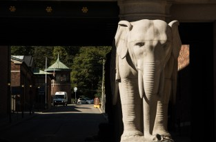 The elephant's gate is the entrance to the Carlsberg compund.