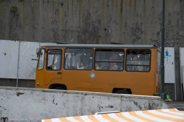 No, this picture of a bus in Capri is not photoshopped, they really look like someone squeezed very hard so they can corner the narrow streets.