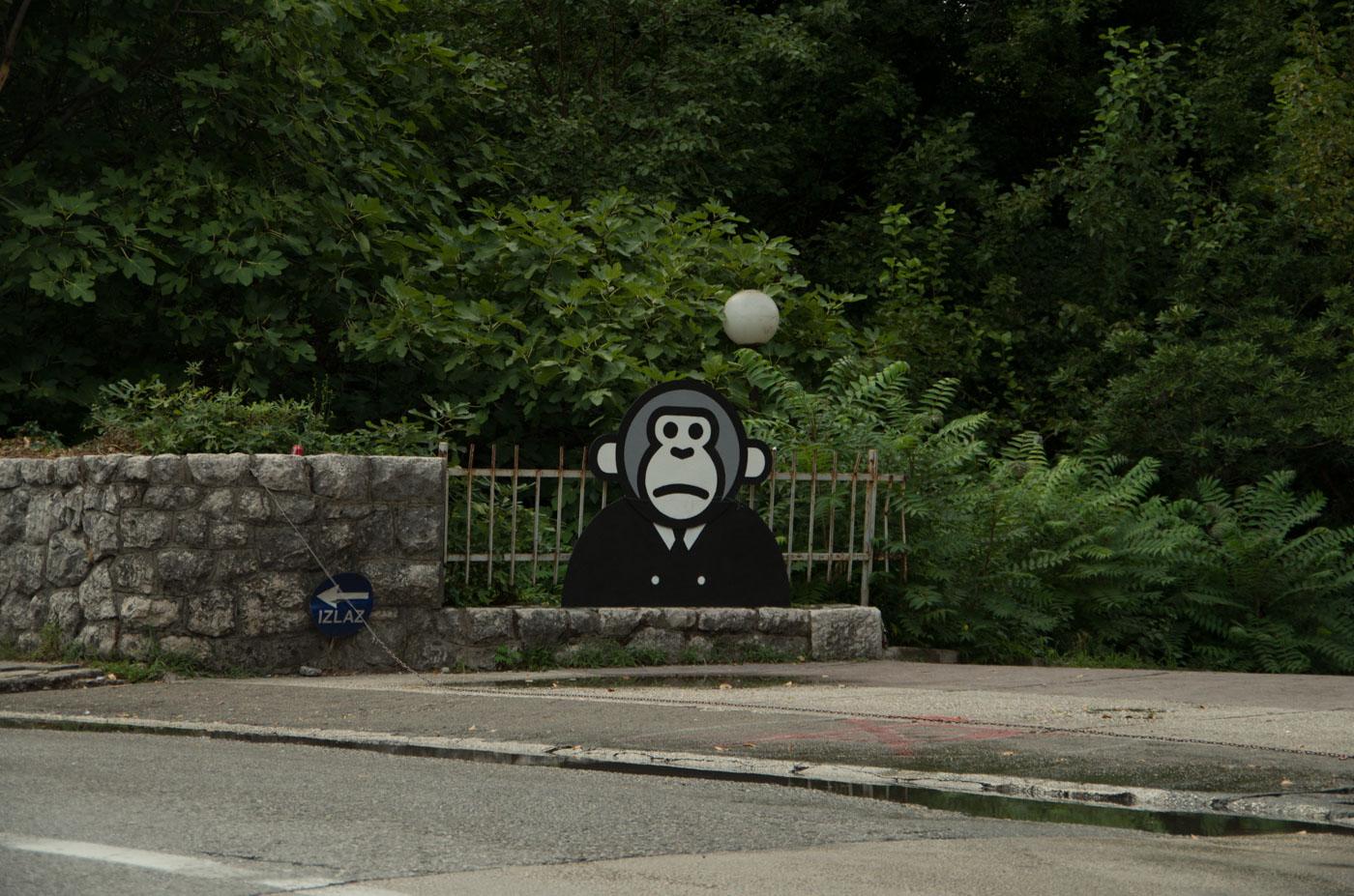 bay-of-kotor-montenegro-2668