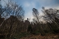 Die Felsformationen des Elbsandsteingebirges eröffnen immer wieder neue Perspektiven.