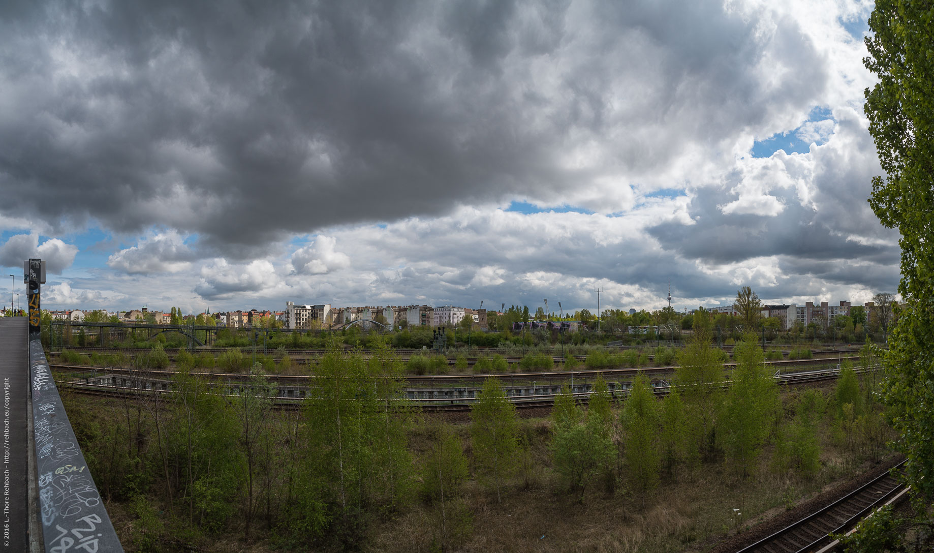 Train-track Wilderness in Berlin, close to Mauerpark