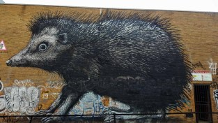 Mural: hedgehog by ROA