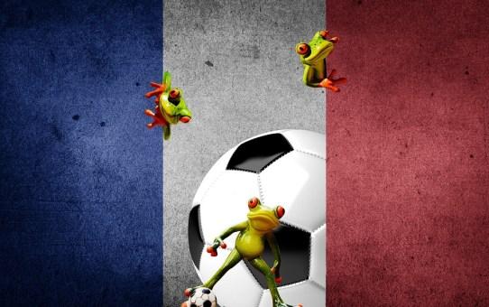 EURO 2016- Drużyna od zaplecza
