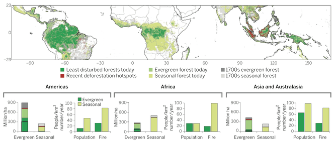 Map of current and historical evergreen and seasonal tropical forest extent. Lewis et al