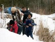 refugee-2