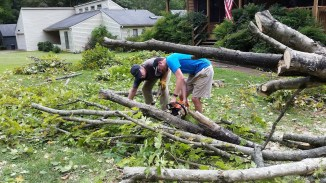 Jonathan and Dale cutting up branches