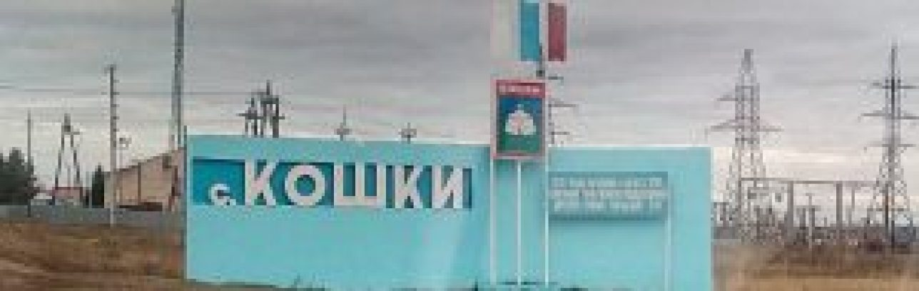 Телекарта ТВ в селе Кошки Кошкинского района