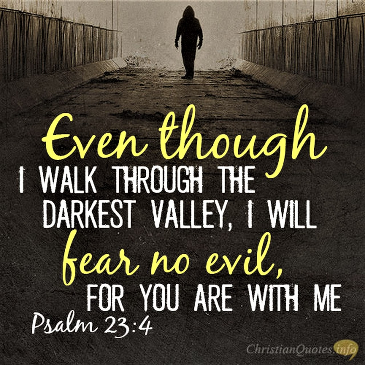 The Living... — Psalm 23:4 (NIV) - Even though I walk through...