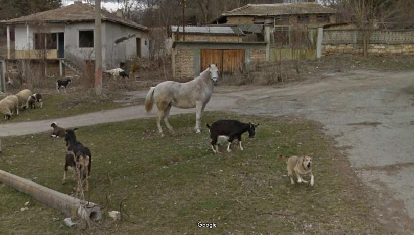 b47f201a537b9facb0e4a90a362b181410733c03 - As descobertas mais interessantes do Google Street View