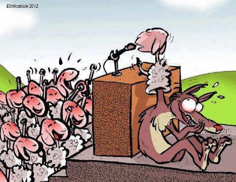 Resultado de imagen para imagenes ovejas al matadero
