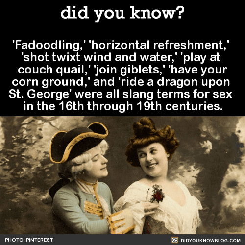 'Fadoodling,' 'horizontal refreshment,' 'shot twixt wind and water,' 'play at couch quail,' 'join giblets,' 'have your corn ground,' and 'ride a dragon upon St. George' were all slang terms for sex in the 16th through 19th centuries. Source
