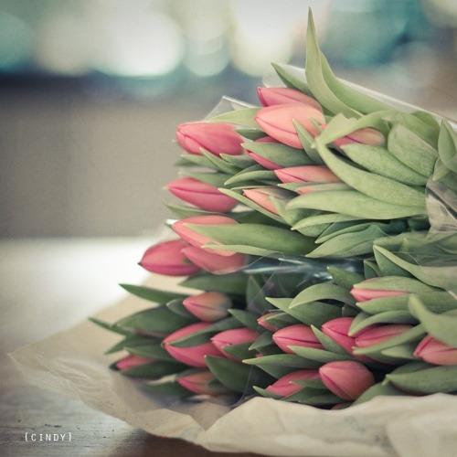 كلمة طيبة ومن يعمل سوءا أو يظلم نفسه ثم يستغفر الله يجد